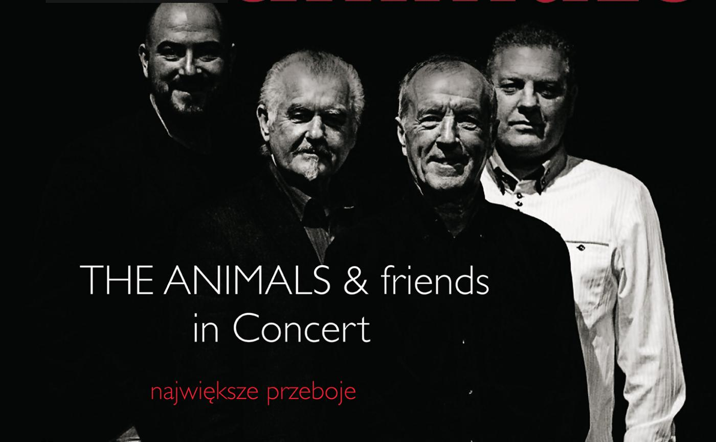 Koncert The Animals w Chorzowie