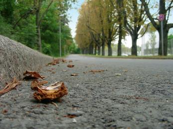 Kierowcy i piesi! Jesienią szczególnie uważajmy na drodze!