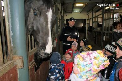 Przedszkolaki odwiedziły chorzowskich konnych