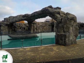 Powrót pingwinów do Śląskiego Ogrodu Zoologicznego jest coraz bliższy!