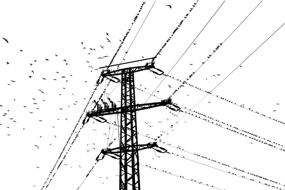 Zabraknie prądu. Sprawdź gdzie! [28.07 -31.07]