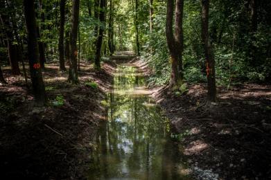 Zakończono budowę polderu przeciwpowodziowego w Parku Śląskim