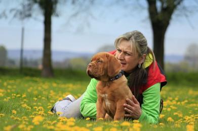 Właściciele psów, uważajcie na swoich pupili! Schronisko ostrzega przed otruciami