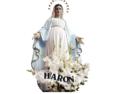 Zakład Pogrzebowy Haron Chorzów